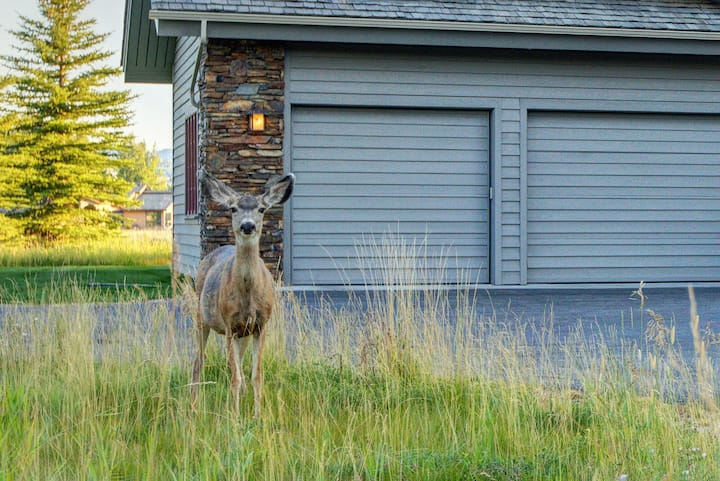 Postcard-Perfect Sprawling Ranch Home, Wildlife Abound | Abode at Stag Leap