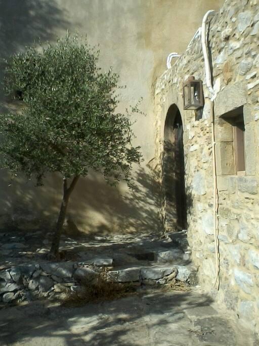 groundfloor entrance/ garden