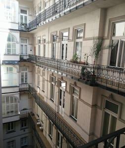 Downtown apartment, 60 square meters,renovate - 布達佩斯 - 公寓