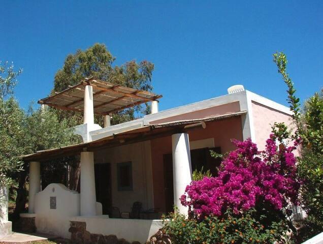 Villa immersa nel verde con terrazza e vista mare - Gioiosa marea - Villa
