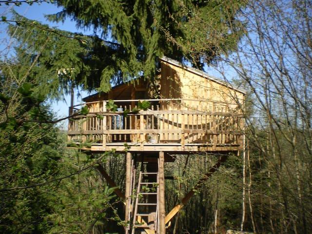 Cabane perchée en pleine forêt - Apinac - บ้านต้นไม้