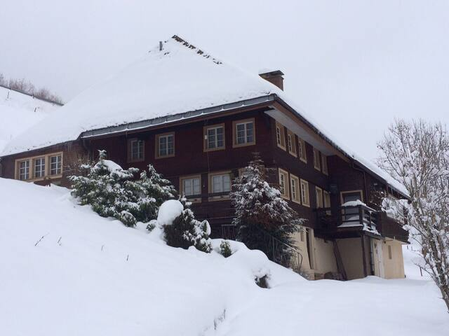 Stübenbächlehof kleine Wohnung - Todtnau