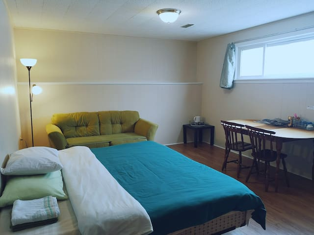 Private basement bedroom/private bath/free parking