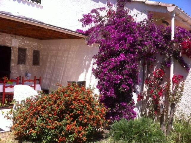 Mini villa en Corse