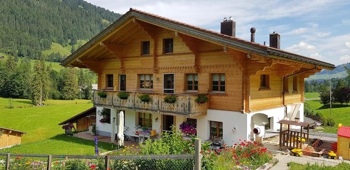 Hübelihus Grund b. Gstaad Ganze Wohnung 8 Pers