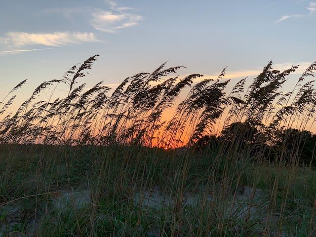 """Lazy Daze"" - Oceanfront 1B/1B HHBT-Steps to Beach"