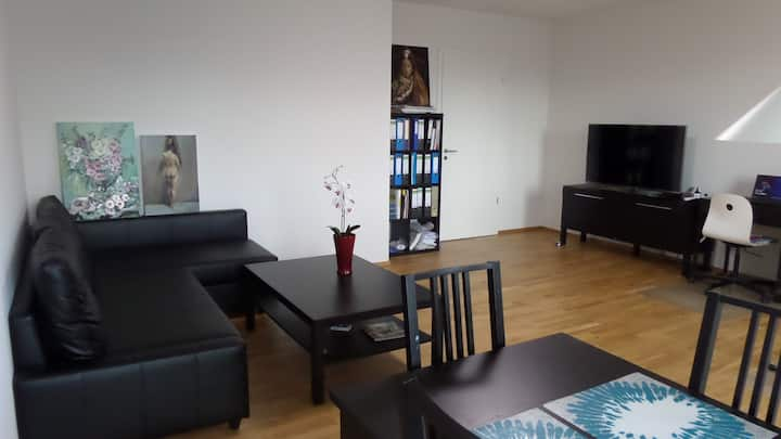 Comfortable Apartment in Frankfurt Riedberg