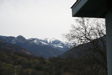 Sequoia Mountain View Cabin