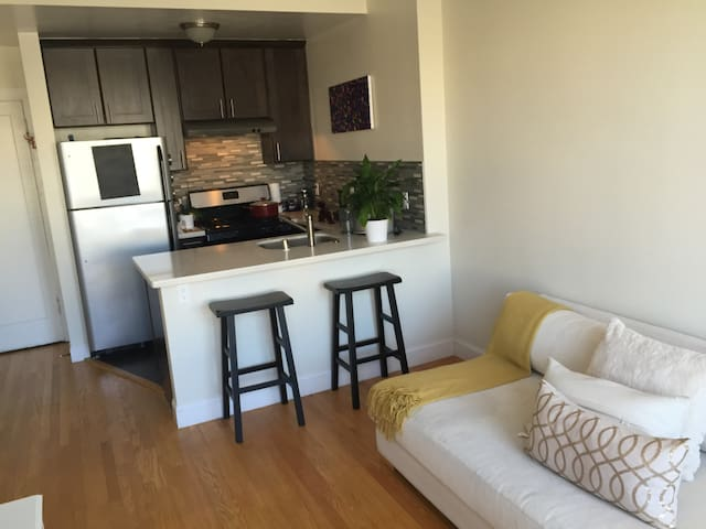 Entire One Bdr Apt in Pac Heights - San Francisco - Apartment