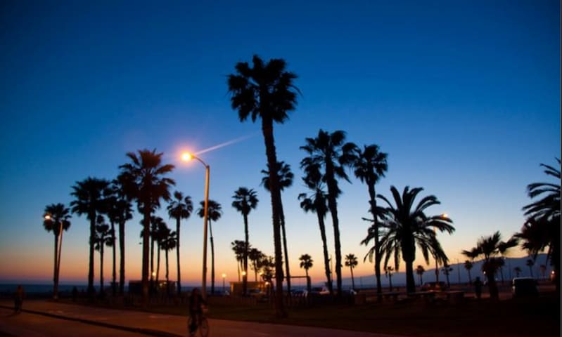 Venice Beach Dreams Live Like a Local next Beach