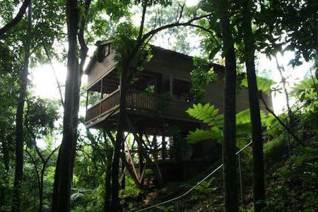 Tree House - Utuado - 独立屋