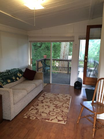 Entryway to the house.  The sofa is a pull-out sleeper sofa.  Straight ahead is one of the two outside decks.