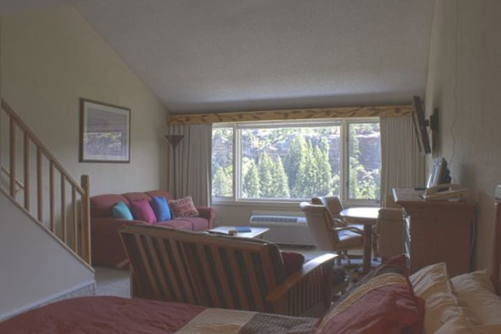 Tamarron Vacation Rentals 510 - Living Area - Durango, Colorado