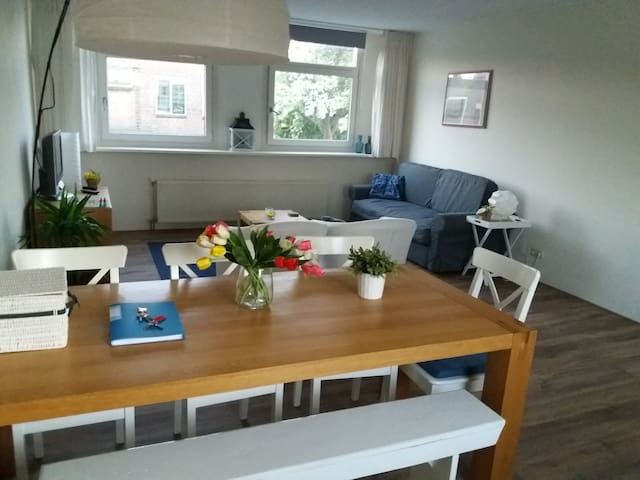 Ruim appartement met dakterras in Leiden