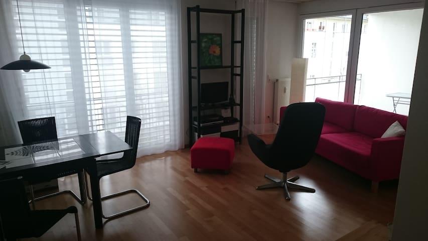 2 Zimmer Appartment - Grenzach-Wyhlen - Byt