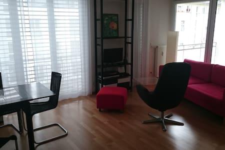 2 Zimmer Appartment - Grenzach-Wyhlen