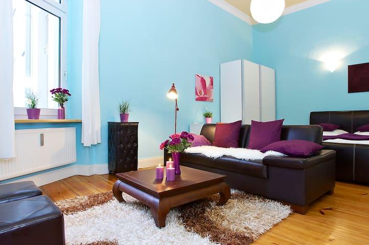 Cozy central 1-room apartment (49).