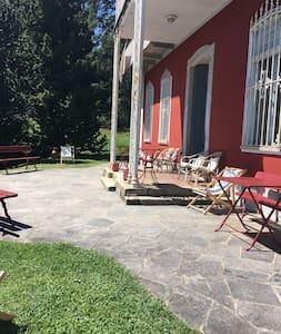 Villa Oglon - Province of Verbano-Cusio-Ossola - 別荘