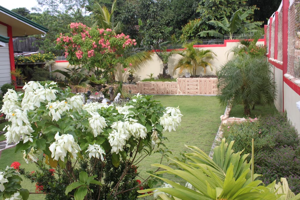 Looking at the front yard  with nice flowering plant  and  well l manicured lawn
