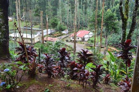 Casa Hacienda El Quetzal- charming wood cabin