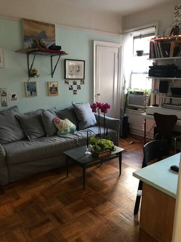 Sunny, Cozy Private Apt. in Brooklyn