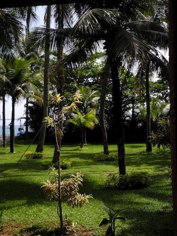 Paraíso pé-na-areia - São Sebastião