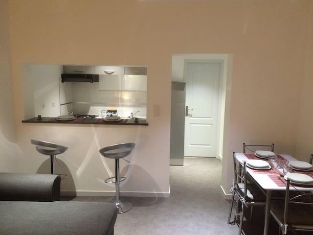 Très bel appartement bord de loire - LA BOHALLE - Apartment