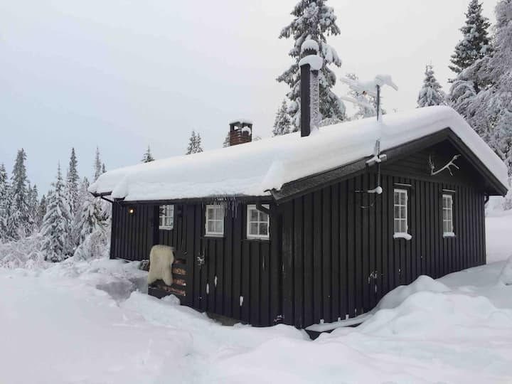 Eggedal cottage at the lake, a private space
