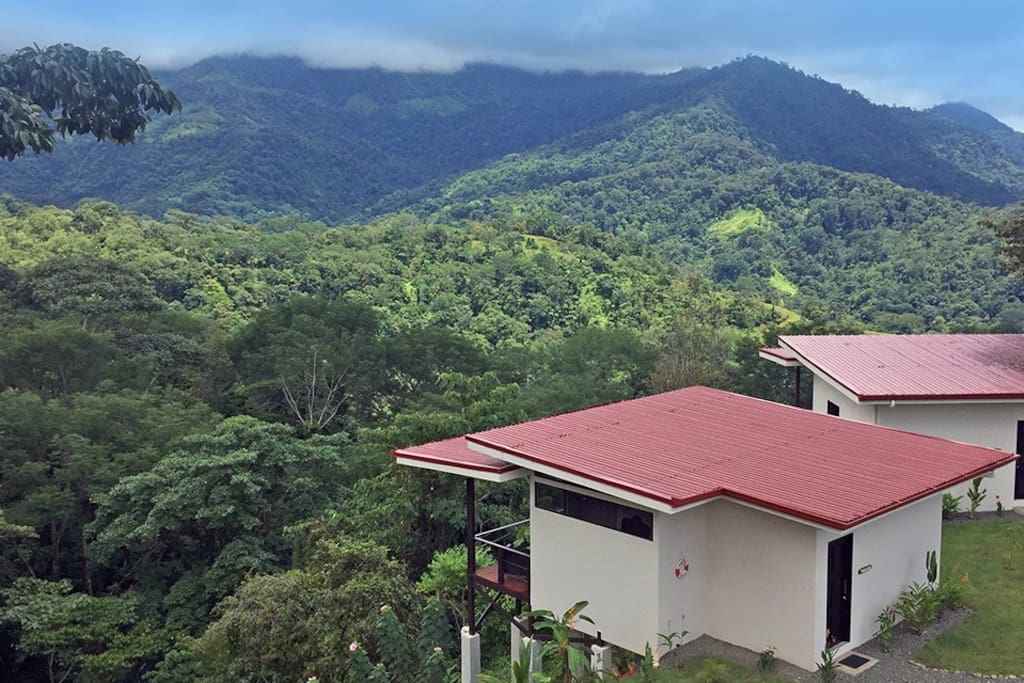 Your cabin stilted 18 feet in the air with breathtaking jungle views.