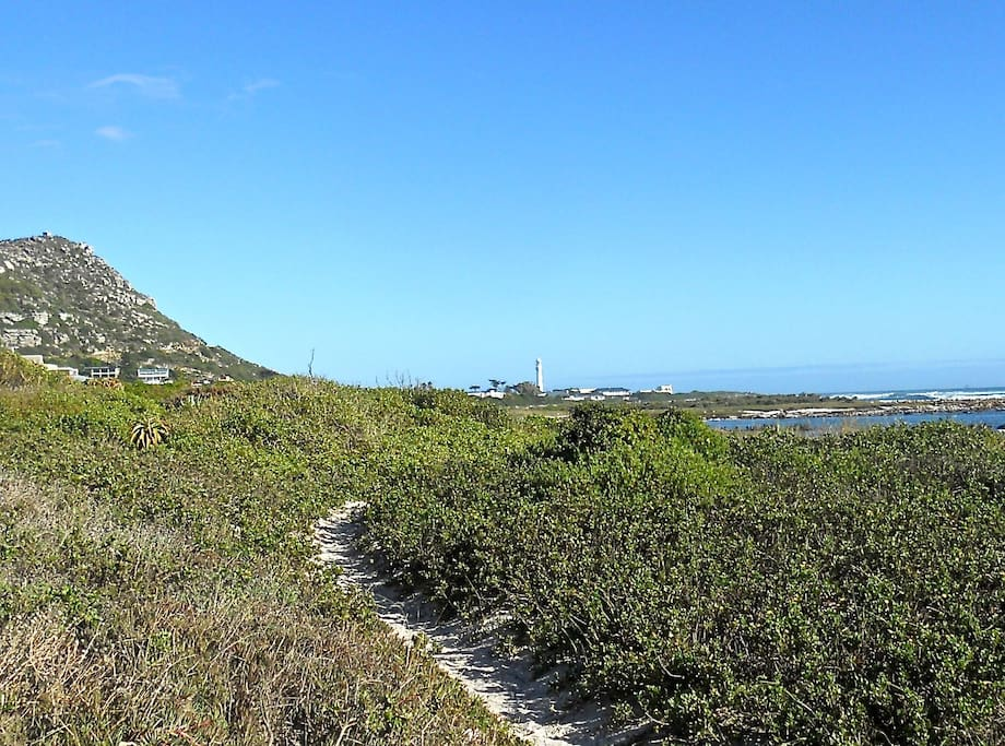 Walk to the lighthouse