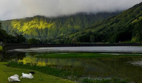 Bortsett från Singer, mellan dammar och hav. Azorerna