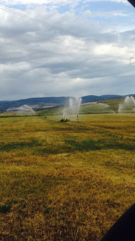 Hay fields in full swing...