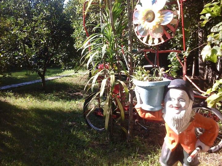 Carmelo Hostel & Garden