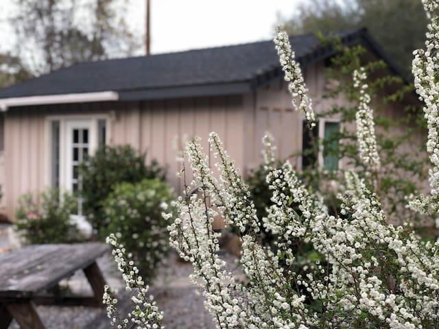 Private Cottage - 30 Day Minimum