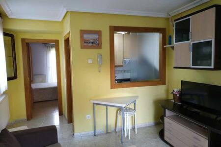 Apartamentos de 1 dormitorio con terraza