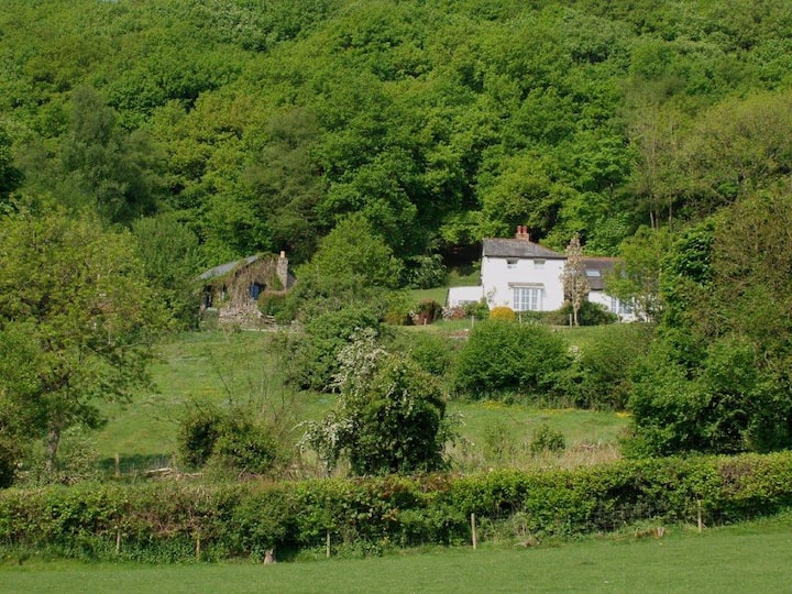 Shepherds Cottage and Maes-y-deri