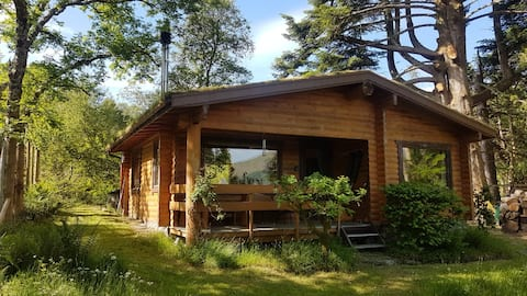 Cosy woodland Log Cabin in Duisky,  Fort William