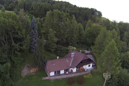 Urig gemütliches Haus am Berg - Sankt Michael im Lungau