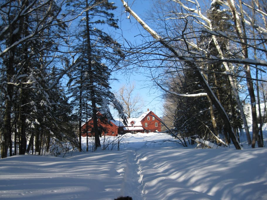 Trails for hiking, snowshoeing and snowmobiling