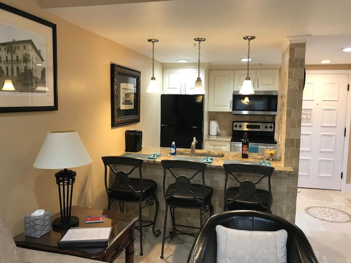 Professionally Decorated 1 Bdr Condo in Innisbrook