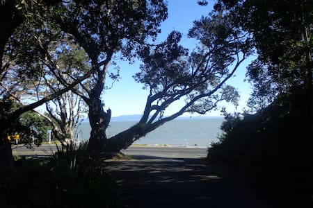 Birdwood, on the coromandel coast