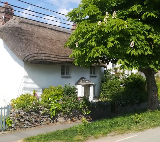 Elm Tree Cottage