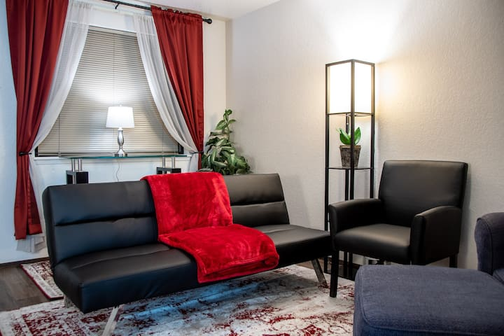Downtown Apartment For The Traveling Professional