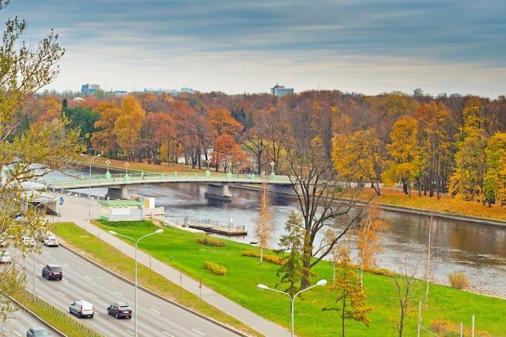 Вид из окна апартаментов.  Перед вами Центральный Парк Культуры и Отдыха в Санкт-Петербурге на Елагин Острове.
