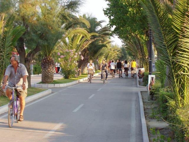 A 100 metri dal mare sulla Strada Parco - Pescara - Flat