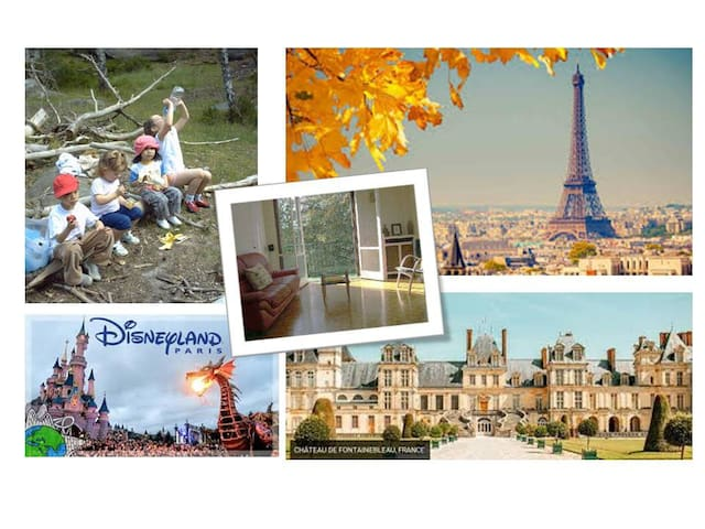 Cozy T5 apartment  to Paris-Disney-Fontainebleau