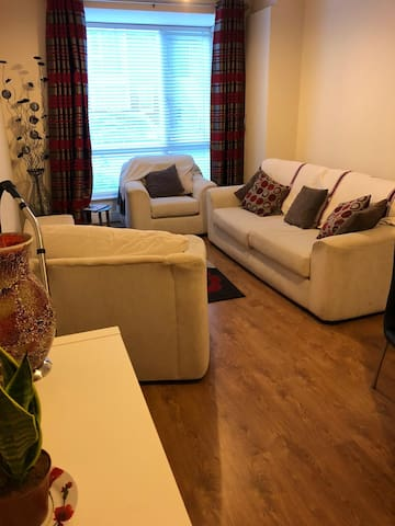 Spacious 1 BR Apt in Dublin 18-close to the Luas