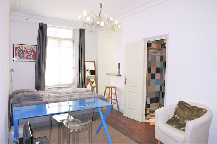 Studio 30m2 historical center district St Germain