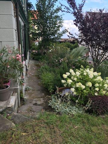 """Gartenwohnung """"Zum Grünen Haus"""" - Walzenhausen - House"""