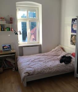 Cosy room in heart of Linz - Linz - Wohnung